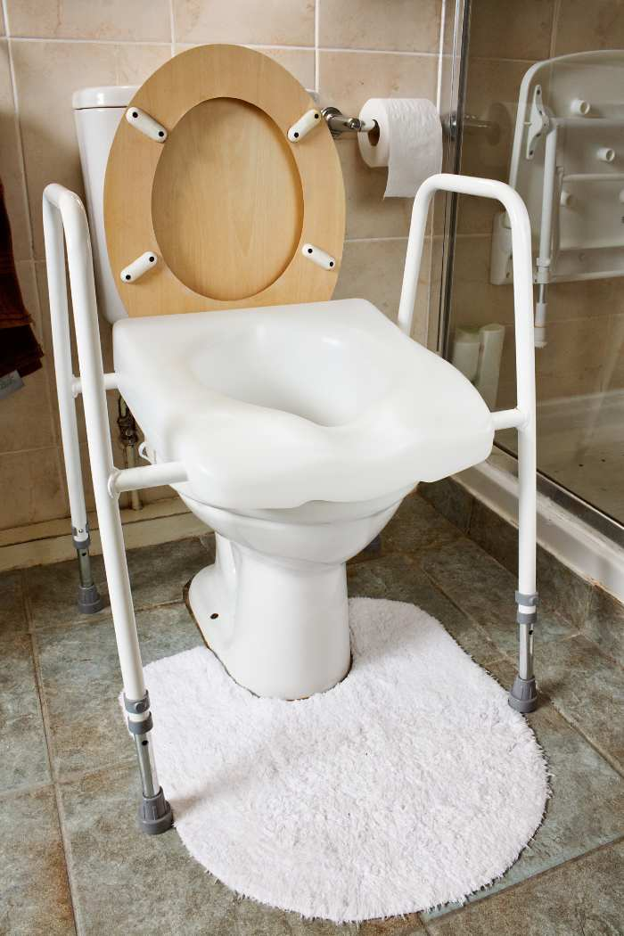 Toilet With Seat And Rails